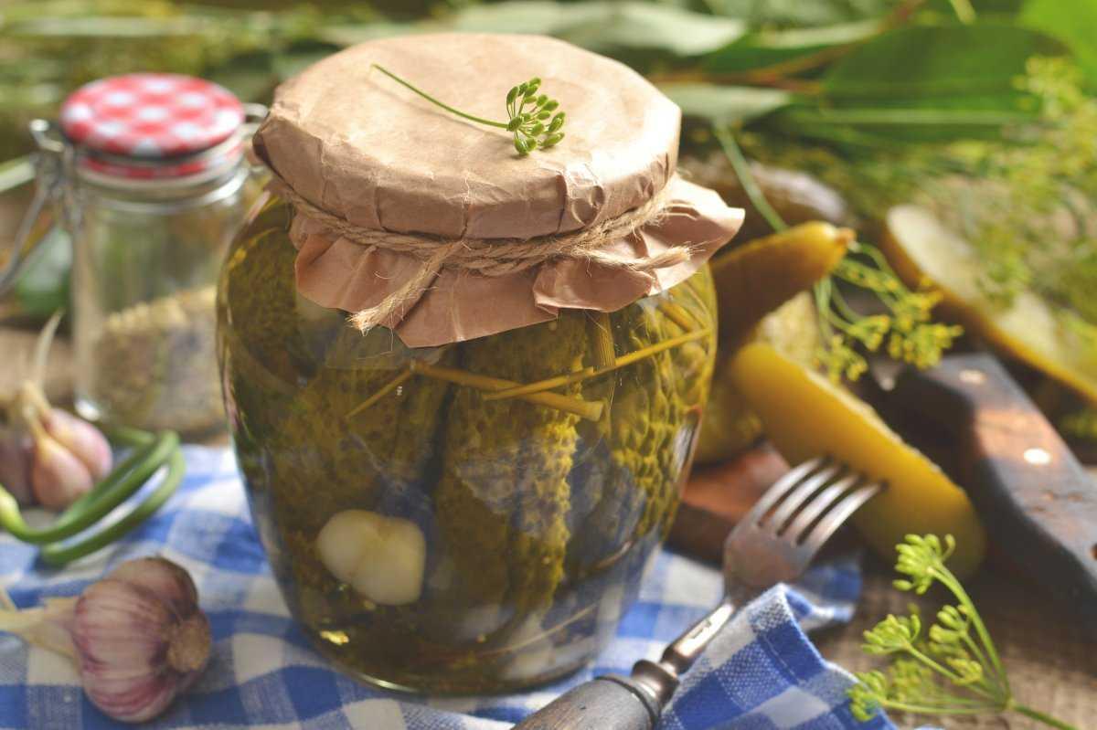Огурцы в горчичной заливке на зиму - рецепты приготовления в банках со стерилизацией и без