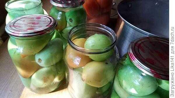 Очень вкусные зеленые маринованные помидоры на зиму и быстрого приготовления