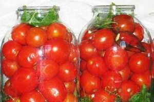 Малосольные помидоры в пакете с чесноком — быстрые рецепты приготовления
