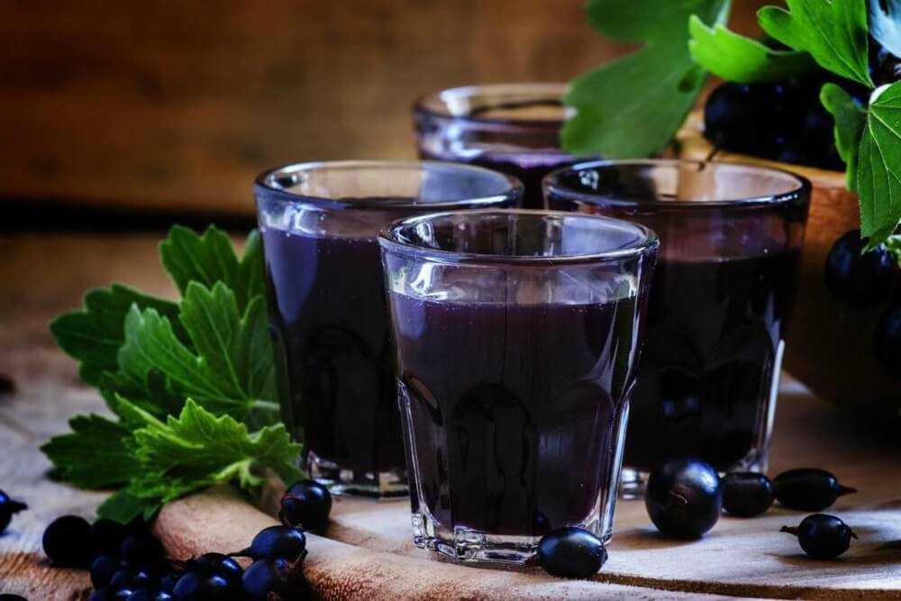 Вино из черной смородины: рецепты в домашних условиях