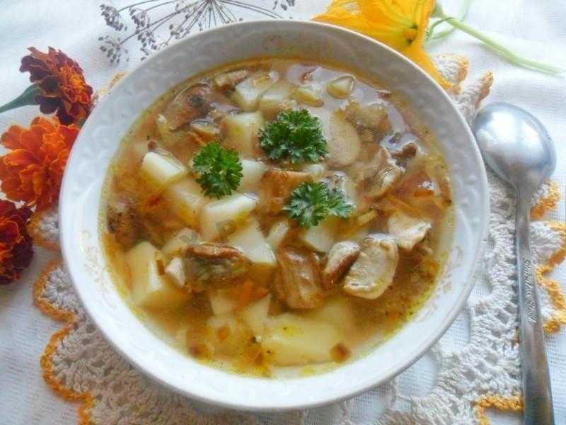 Грибной суп из замороженных грибов | 5 рецептов приготовления