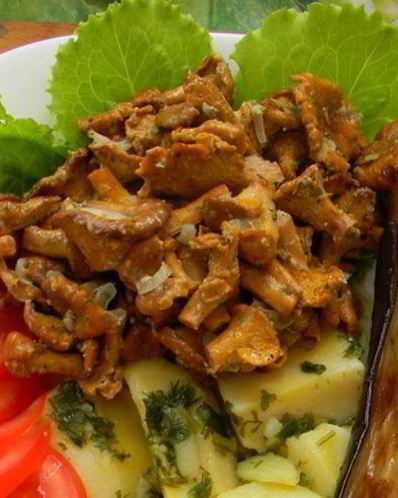 Подлива из курицы: 6 фото рецептов для вкусного ужина