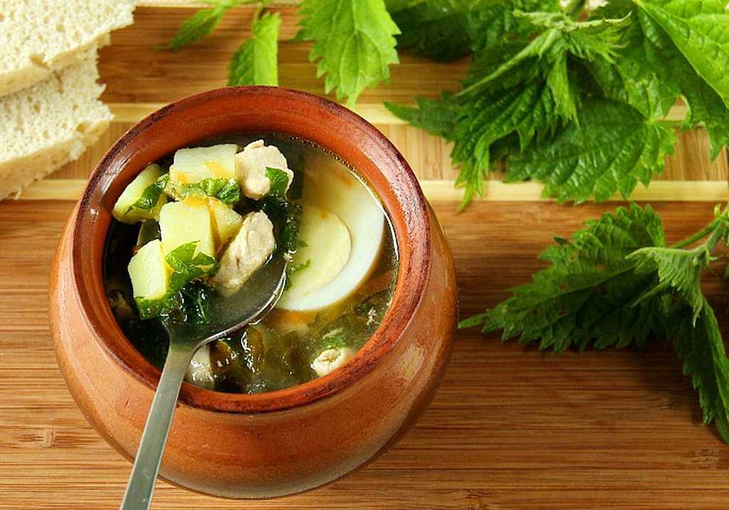 Зеленый борщ с щавелем и яйцом — 9 простых и вкусных рецептов зеленого борща