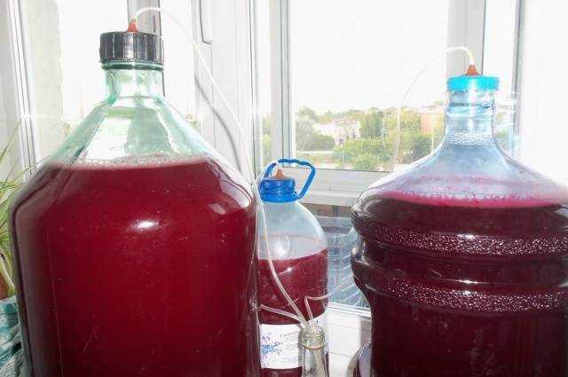 Домашнее вино из вишни без сахара