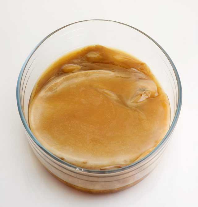Можно ли пить чайный гриб при сахарном диабете? польза чайного гриба и противопоказания