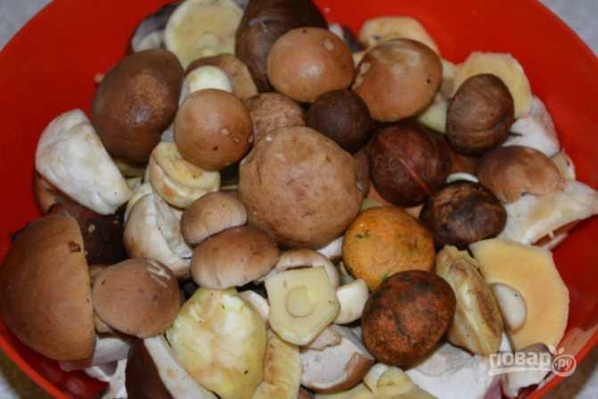 Как солить грибы на зиму в банках простой рецепт, с фото
