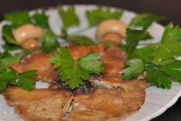 Приготовление гриба зонтика пестрого: описание вида, рецепты с кляром и маринадом