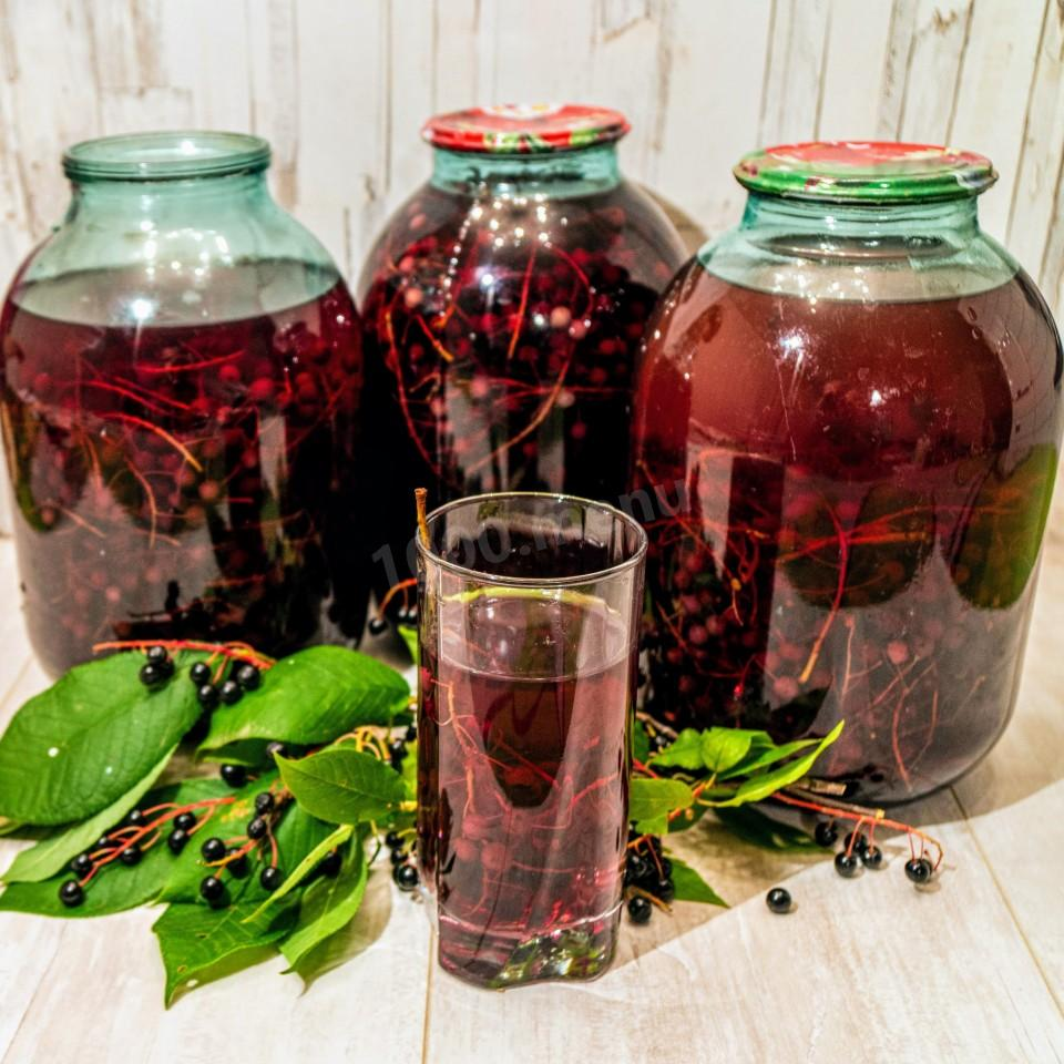 Компот из фейхоа: рецепты приготовления - kabluchek.ru