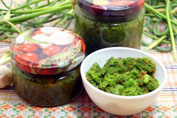 Несколько рецептов маринования черемши в домашних условиях