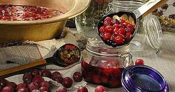 Что можно приготовить из ягод боярышника на зиму — рецепты варенья, джема, желе, компота