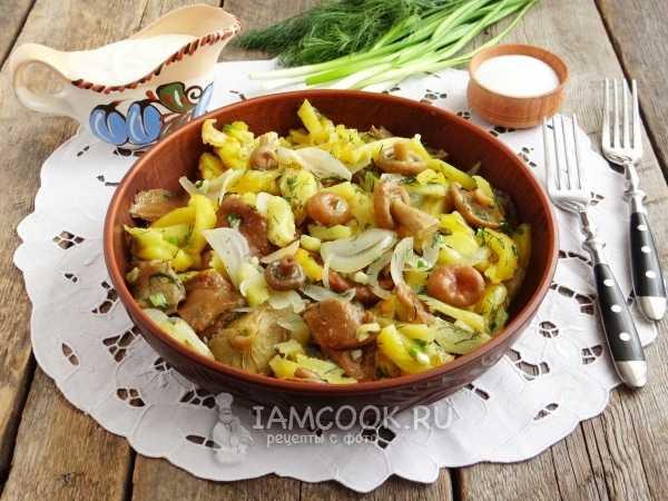 Салаты из рыжиков: фото, рецепты закусок из грибов на зиму и для быстрого употребления