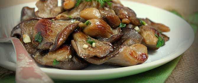 Как готовить вешенки - быстрый и вкусный рецепт