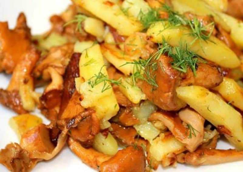 Жареные грибы с луком - 450 домашних вкусных рецептов приготовления