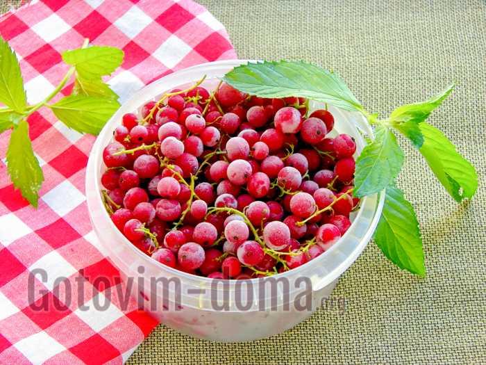 Свежие ягоды зимой — как замораживать красную смородину?