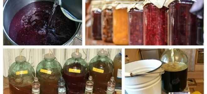 Самогон из дыни: классический рецепт и список необходимых ингредиентов, правила хранения и употребления напитка