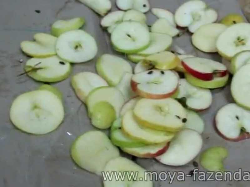При какой температуре и сколько времени должна осуществляться сушка яблок в электросушилке? русский фермер