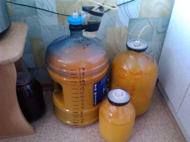 Вино из облепихи в домашних условиях - da4nikpro