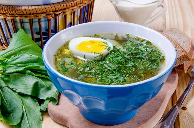 Зеленый борщ с щавелем и яйцом - 8 рецептов классического щавелевого борща с фото пошагово