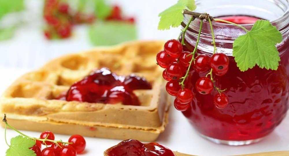 Десерт из красной смородины с желатином - 10 пошаговых фото в рецепте