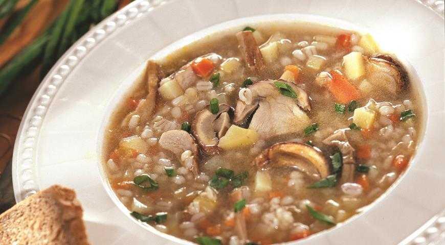 Суп из опят свежих