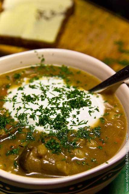 Сытные и полезные рецепты супа-пюре из белых грибов