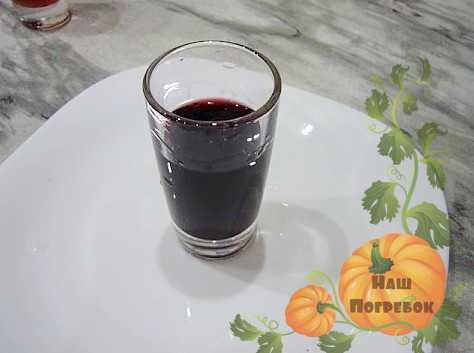 Настойка из черноплодной рябины: польза, приготовление - целебные травы