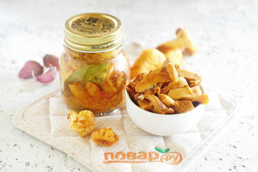 Заморозка лисичек на зиму: рецепты заготовки грибов, как правильно заморозить лисички в домашних условиях