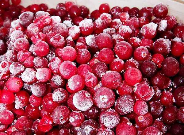Брусника на зиму: рецепты без варки, правила приготовления и хранение заготовок