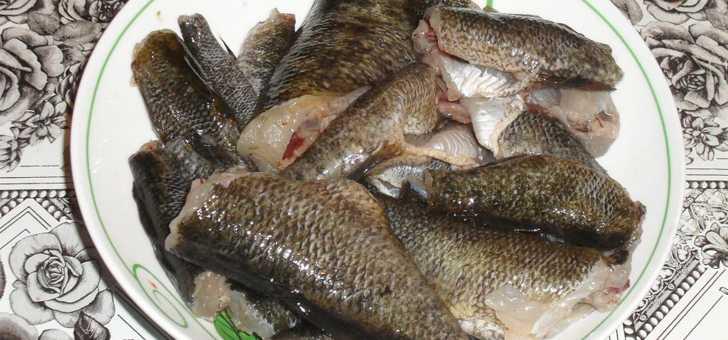 Как замариновать рыбу для копчения