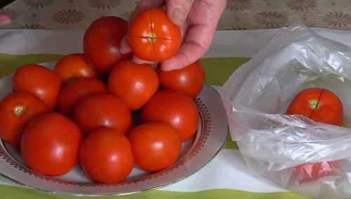 Малосольные помидоры: рецепты быстрого приготовления в кастрюле, банке, пакете