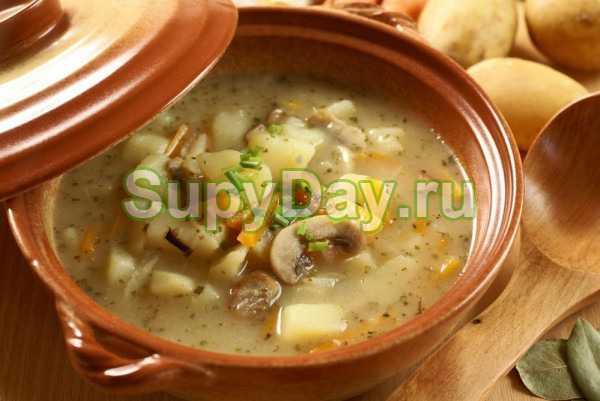 Грибной суп с перловкой - вкусные вариации: рецепт с фото и видео