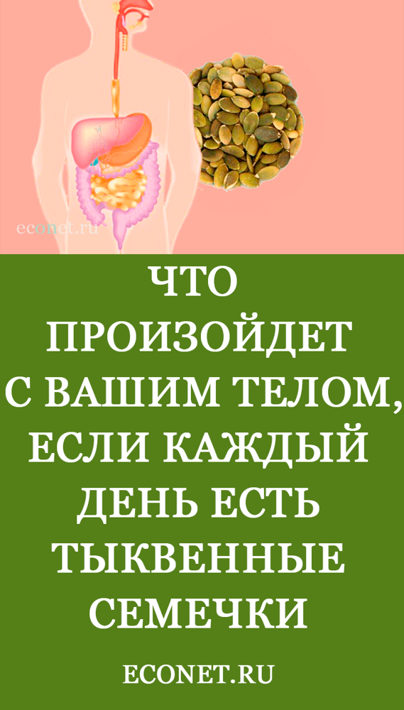 Тыквенные семечки: польза для женщин и мужчин, калорийность