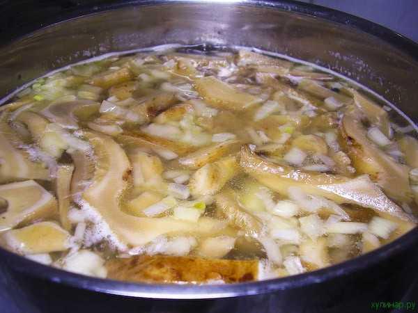 Суп из груздей, рецепты приготовления