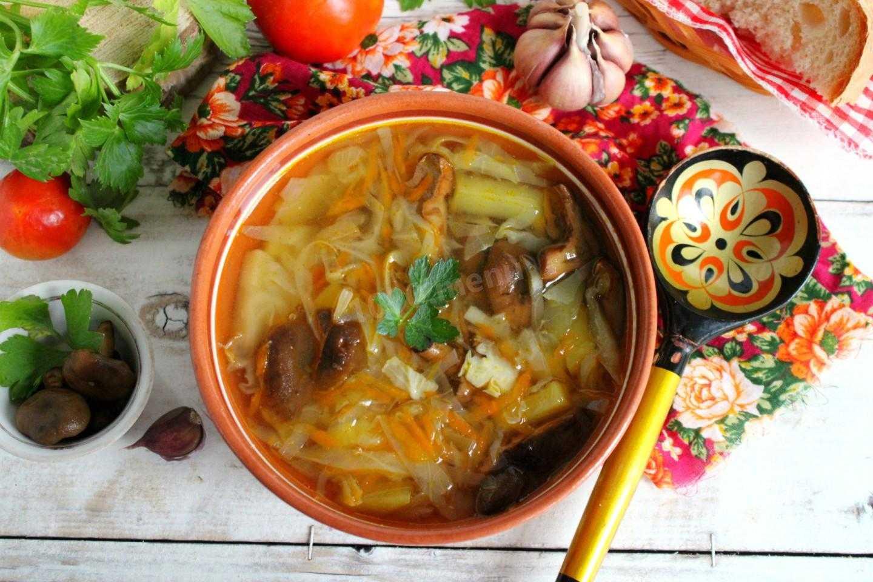 Суп из опят – это просто и полезно! самые лёгкие рецепты супа из опят: с мясом, крупой, в горшочках, рассольник и солянка - автор екатерина данилова - журнал женское мнение