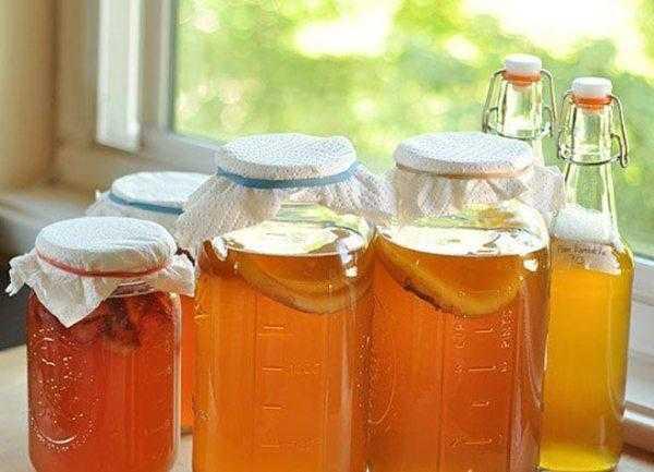 Уход и употребление чайного гриба в домашних условиях (+22 фото)