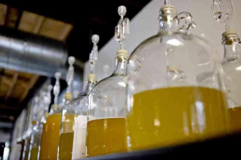 Медовые напитки: рецепты, виды и классификация