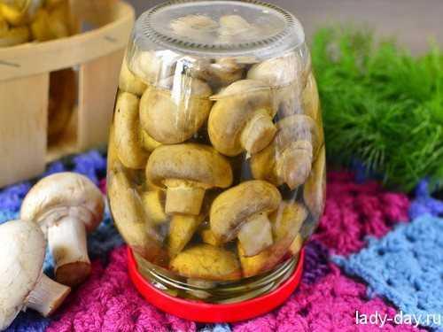 Как посолить грибы волнушки отварные. как солить волнушки на зиму в банках