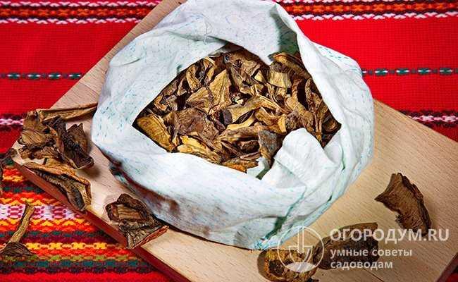Основные тонкости хранения грибов