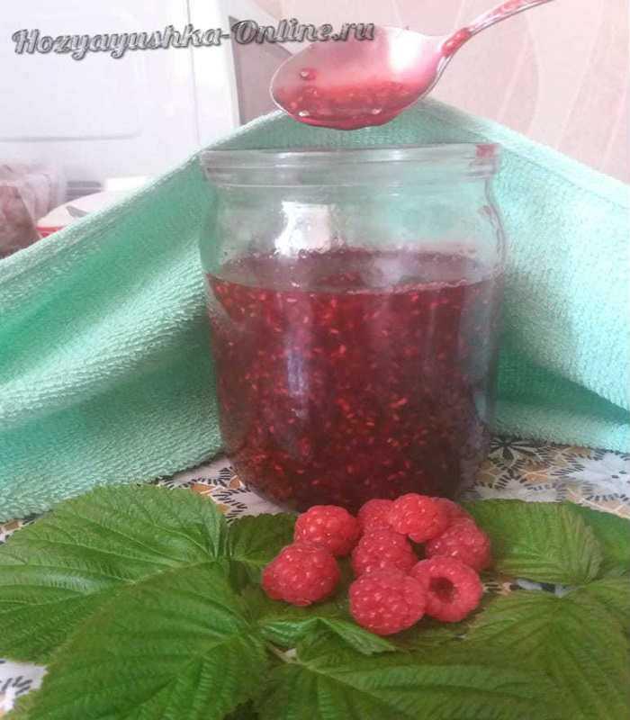 Джем - проверенные рецепты заготовки джема на зиму из ягод и фруктов