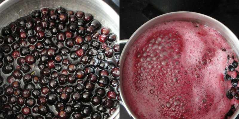 Изюм из черноплодной рябины в домашних условиях. как можно использовать в домашней косметологии: рецепты