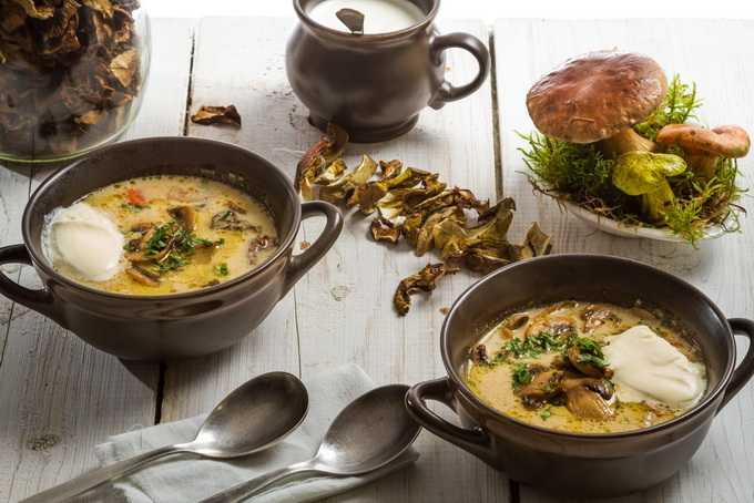 Супы из свежих, сушеных и замороженных белых грибов со сливками: рецепты приготовления грибных первых блюд
