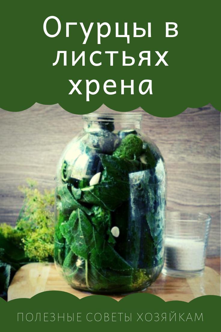Маринованные огурцы как магазинные: рецепты на зиму