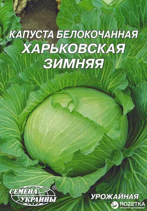 Можно ли квасить капусту в оцинкованном ведре. можно ли квасить капусту в пластиковом ведре? капуста квашеная без соли и сахара – классический рецепт