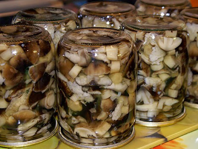 Как мариновать грибы вкусно и быстро