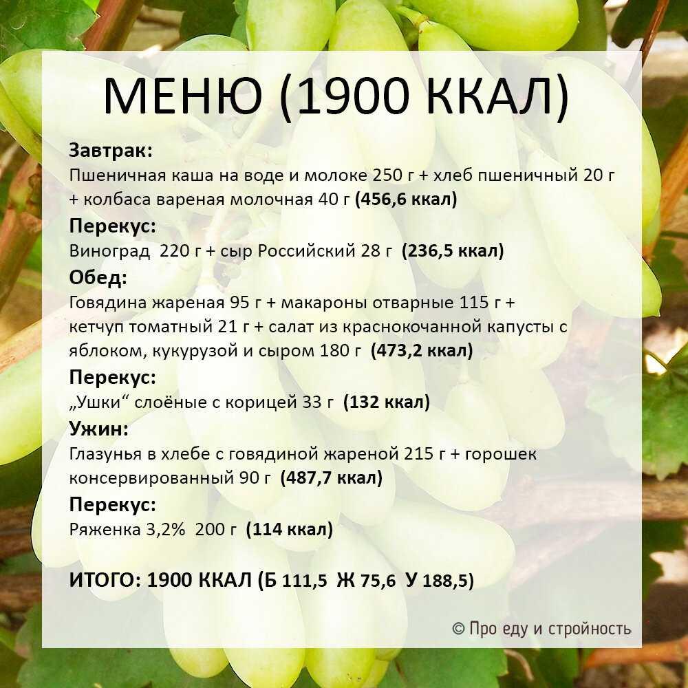 Рецепты салат из молодой капусты