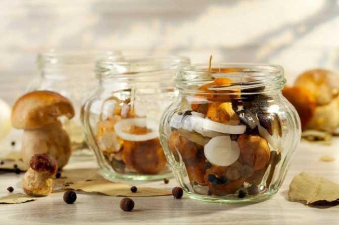 Как хранить соленые грибы в домашних условиях. тонкости и хитрости хранения солёных грибов: закатанных в банки или без закатки - автор екатерина данилова