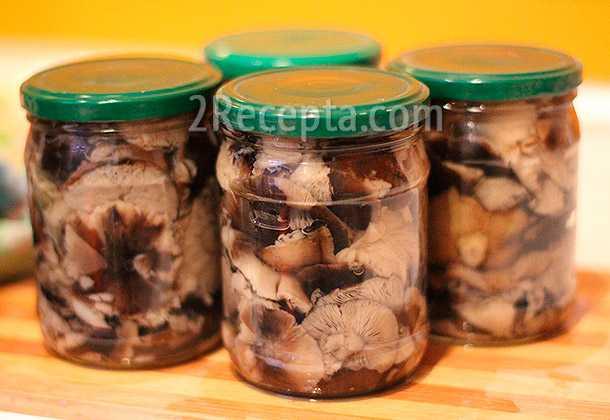 Как приготовить грибы рядовки на зиму - грибы собираем