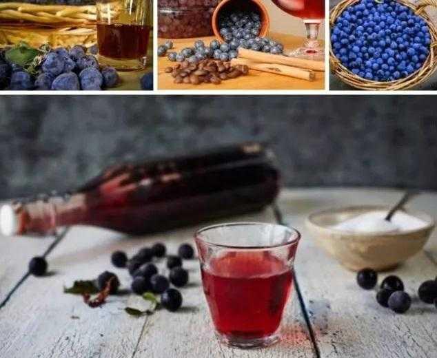 Вино из терна в домашних условиях: простой рецепт приготовления.