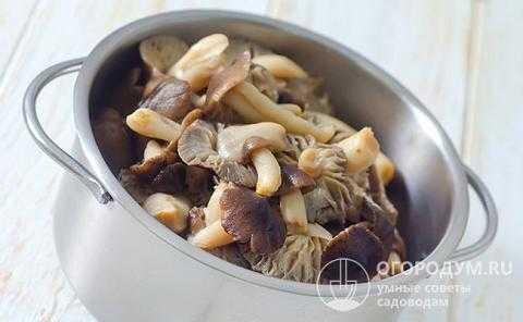 Как солить сыроежки в домашних условиях быстро. жареные сыроежки: рецепты приготовления блюд из грибов
