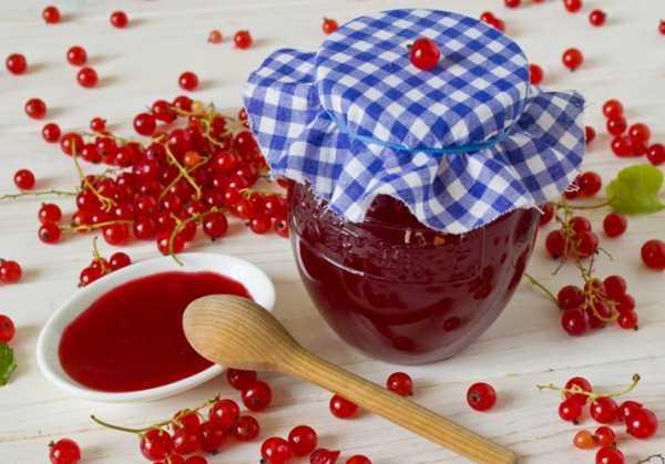 Желе из красной смородины на зиму - простой рецепт - без стерилизации и варки -пошаговая инструкция